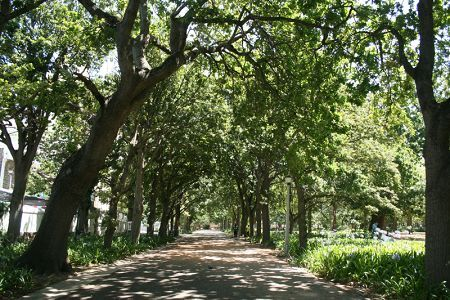 Visit South Africa's most historic public garden and one of Cape Town's top tourist attractions. The majestic Houses of Parliament and historic landmarks are located nearby.