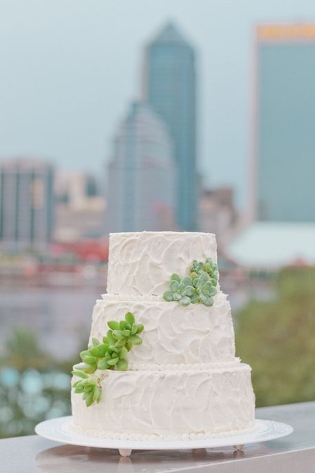 succulent wedding cake / Jennifer Blair Photography