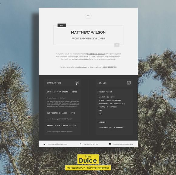 Web Developer CV   Tech CV by introDuice - CV Templates on - web developer resume template
