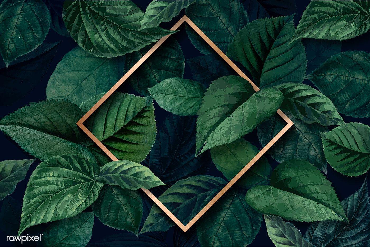 Download Premium Vector Of Gold Rhombus Frame On A Green Leaves Textured Logotipo Ou Logomarca Logotipo Das Roupas Logomarca