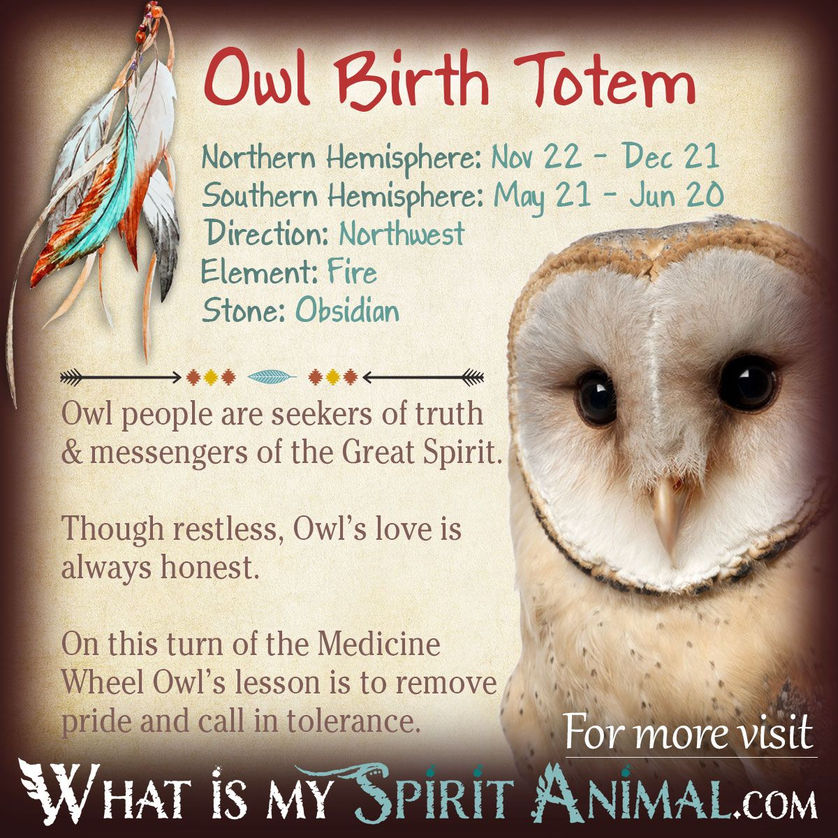 Owl totem totems zodiac and native americans is owl your birth totem read the in depth description in my native american zodiac biocorpaavc Images