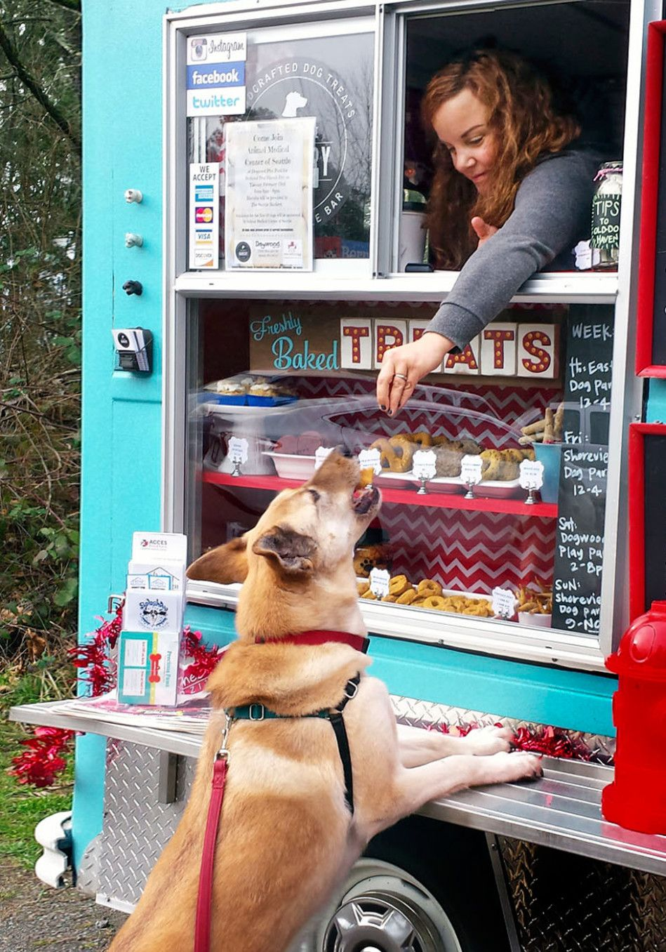 There Are Food Trucks For Dogs Now Dogs Happy Dogs Dog Care