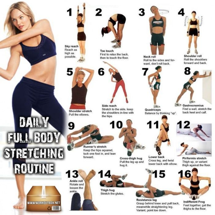 Daily Full Body Stretching Routine ! Healthy Fitness Stretch Abs ...