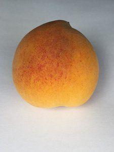 Peach Print by Ingrid Van Amsterdam