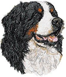 embroidery designs bernese mountain dogs | Animals World - Dog Breeds - Bernese Mountain Dog - Free