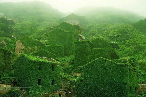 Village chinois abandonné est entièrement recouvert de lierre - Creapills (@creapills) | Twitter