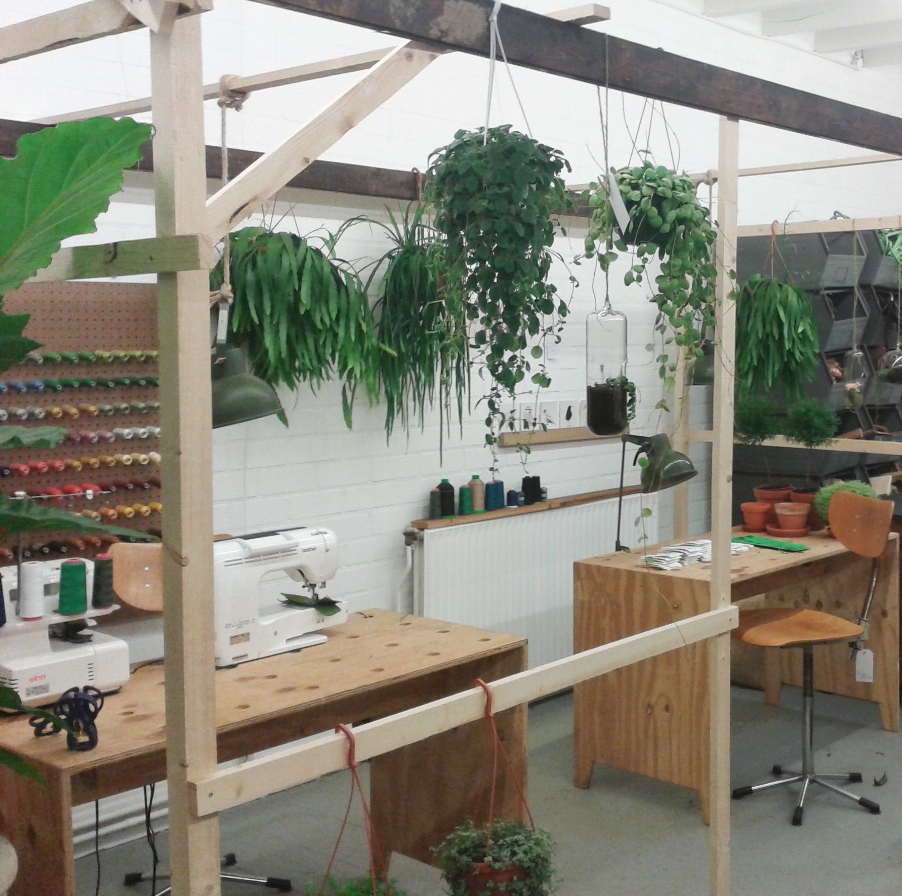 Plantaardig wundervolles Geschäft in Middelburg NL