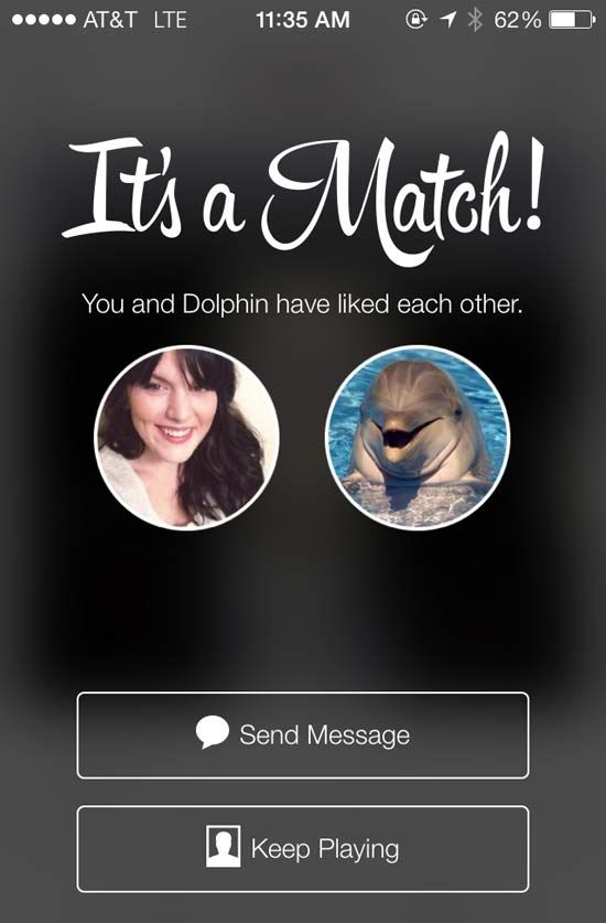 How To Check Matches On Tinder