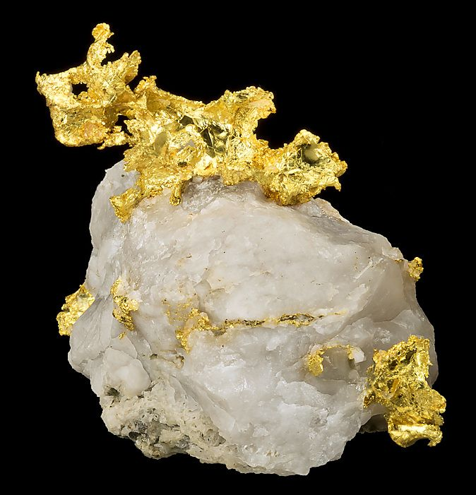 Native Leaf Gold in white Quartz matrix  --  From the Oriental Mine, Alleghany, Forest District, Sierra County, California.