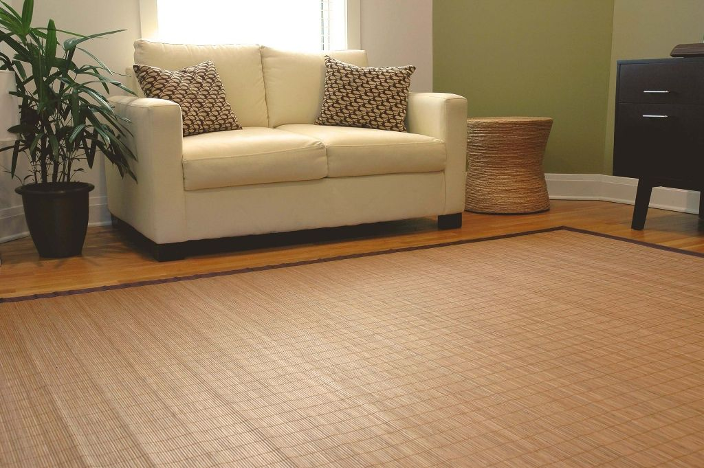 Home Interiors Excellent Bamboo Area Rugs 5x7 Also Are From For
