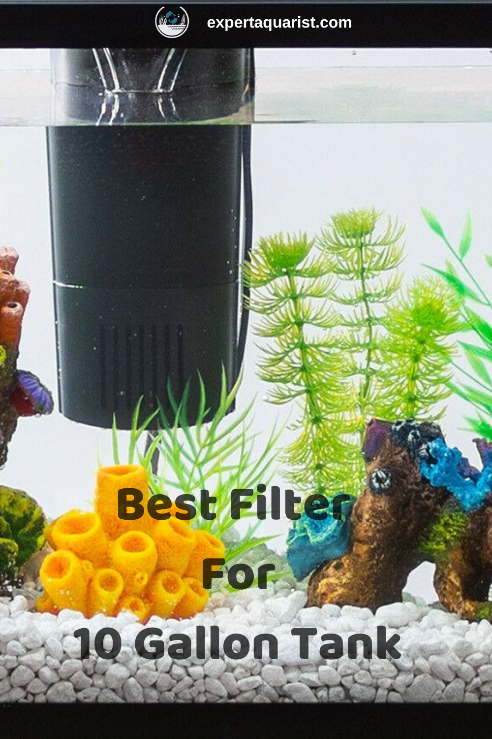 Best 10 Gallon Fish Tank Filter 2020 Reviews Comparison Best Aquarium Filter 10 Gallon Fish Tank Gallon