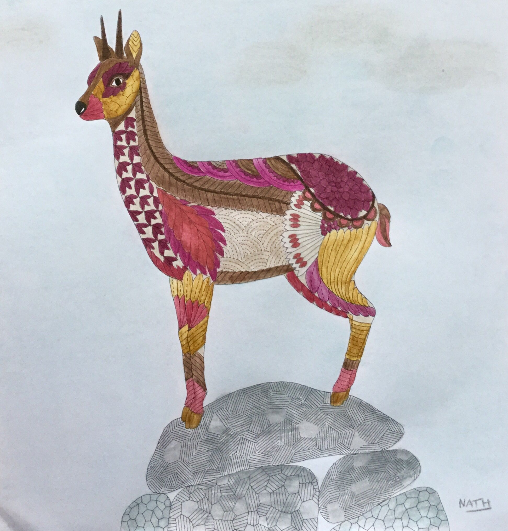My Colouring Millie Marotta Wild Savannah Chamois Wild Savanah - chamois animal coloring pages