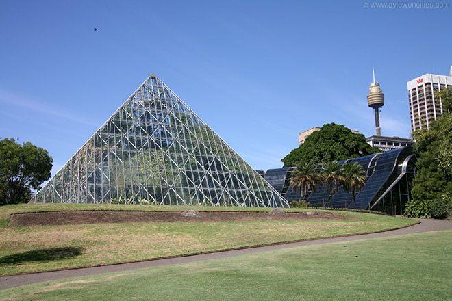 Sydney Tropical Centre