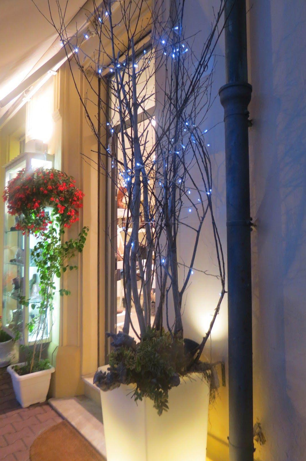 Donna gatta!: Escureceu em Viareggio IV