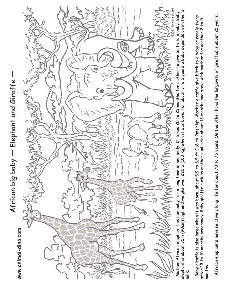 Youth Coloring Page Related To Africa Part Of A Collection For Out Virtual Print It
