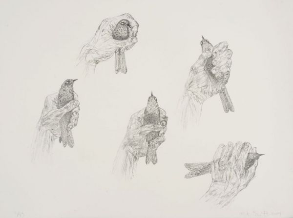 Tamarind Institute of Lithography | Kiki Smith: Untitled