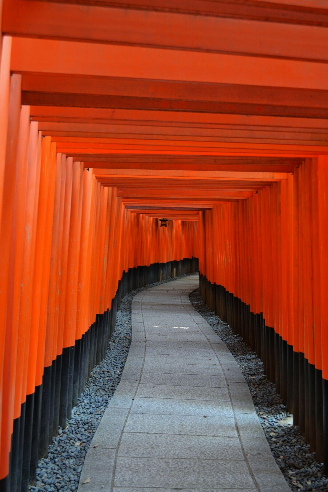 FunkyJapan #kyoto #japan