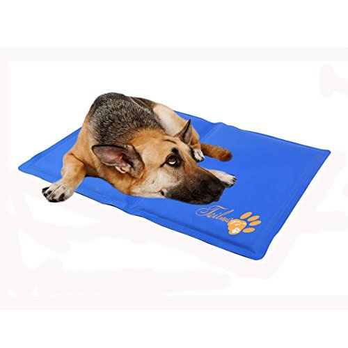 Tailmate Pet Cooling Mat Pad Cover For Dogs Cats Non Toxic Material Pet S Summer Pad L For Sale Large Dog Crate Dog Bed Furniture Pet Cooling Mat