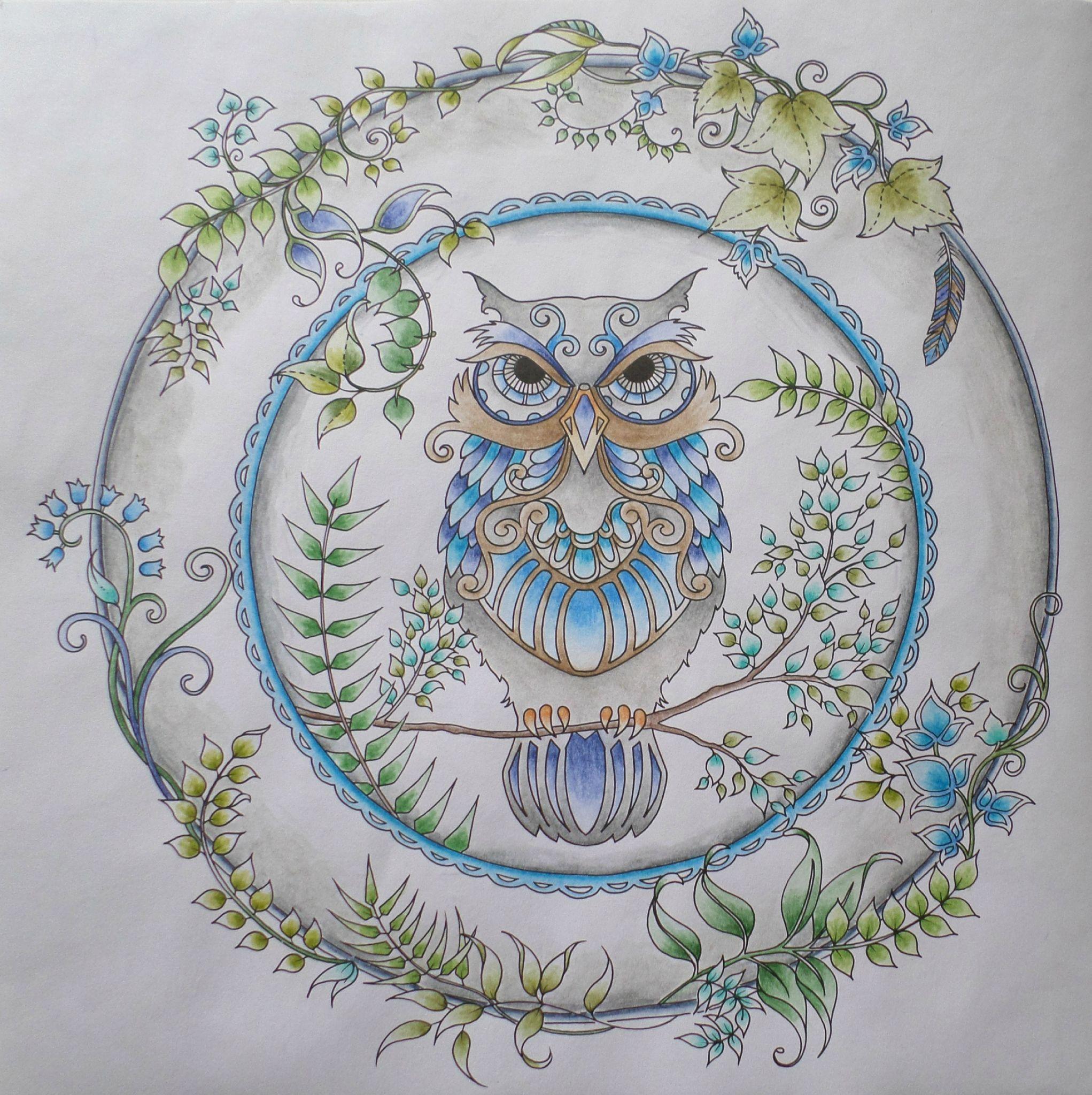 Coloriage livre Forªt Enchantée Johanna Basford Hibou par steffy Elsass crea
