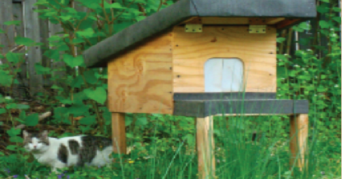 Pin by GetnHempd on WoodWorking | Feral cat shelter, Feral ... Feral Cat House Plans Pdf on heated cat house plans, cat feeding station plans, cat shelter plans, fancy cat house plans, outdoor cat house plans, winter cat house plans, mallard house plans, cat enclosure plans, homesteaders house plans, furniture building plans, kitty house plans, rabbit house plans, cat tree house plans, wood cat house plans, raccoon house plans, squirrel house plans, bear house plans, dog house plans, wooden cat house plans, pet cat house plans,
