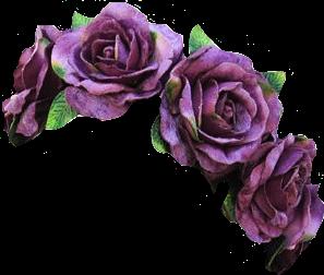 Flower Crown Flowercrown Aesthetic Tumblr Freetoedit Flower Crown Tumblr Flower Crown Flowers
