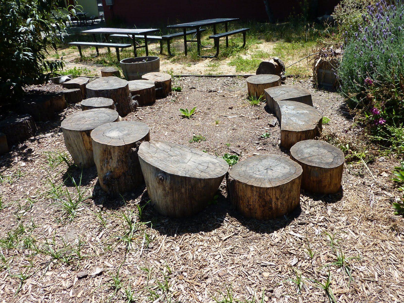 Best 25+ School gardens ideas on Pinterest