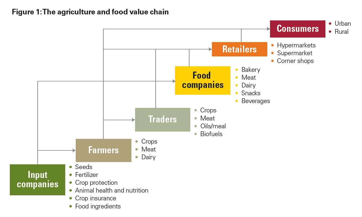 KPMG Value Chain Diagram | Food Vertical | Circular economy, Chain