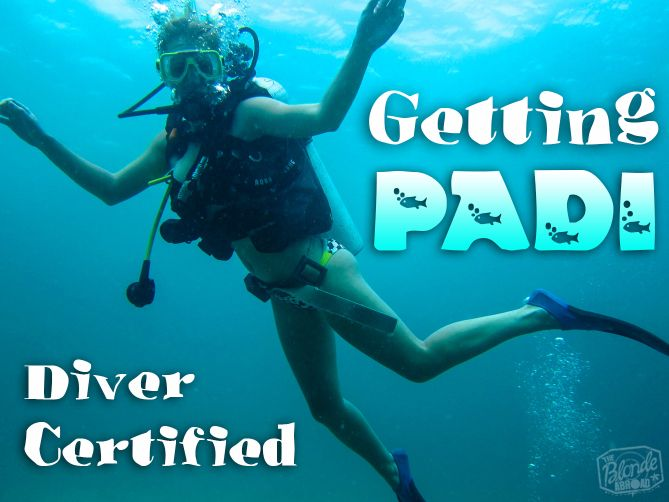 Getting padi diver certified open water panama and travel bugs getting padi certified was one of the best things ive ever done i struggled at first but im getting more comfortable under the sea with each dive fandeluxe Choice Image