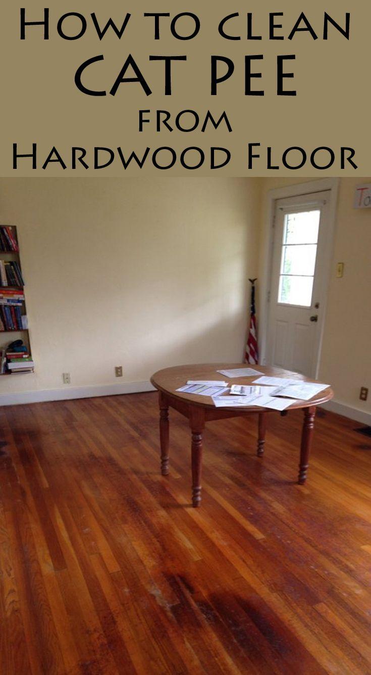 How To Clean Cat Pee From Hardwood Floor Hardwood Floors