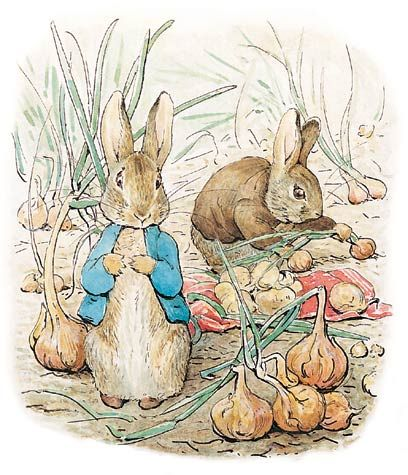 Beatrix Potter Names Jemima Amp Jeremy Beatrix Potter Illustrations Peter Rabbit Friends