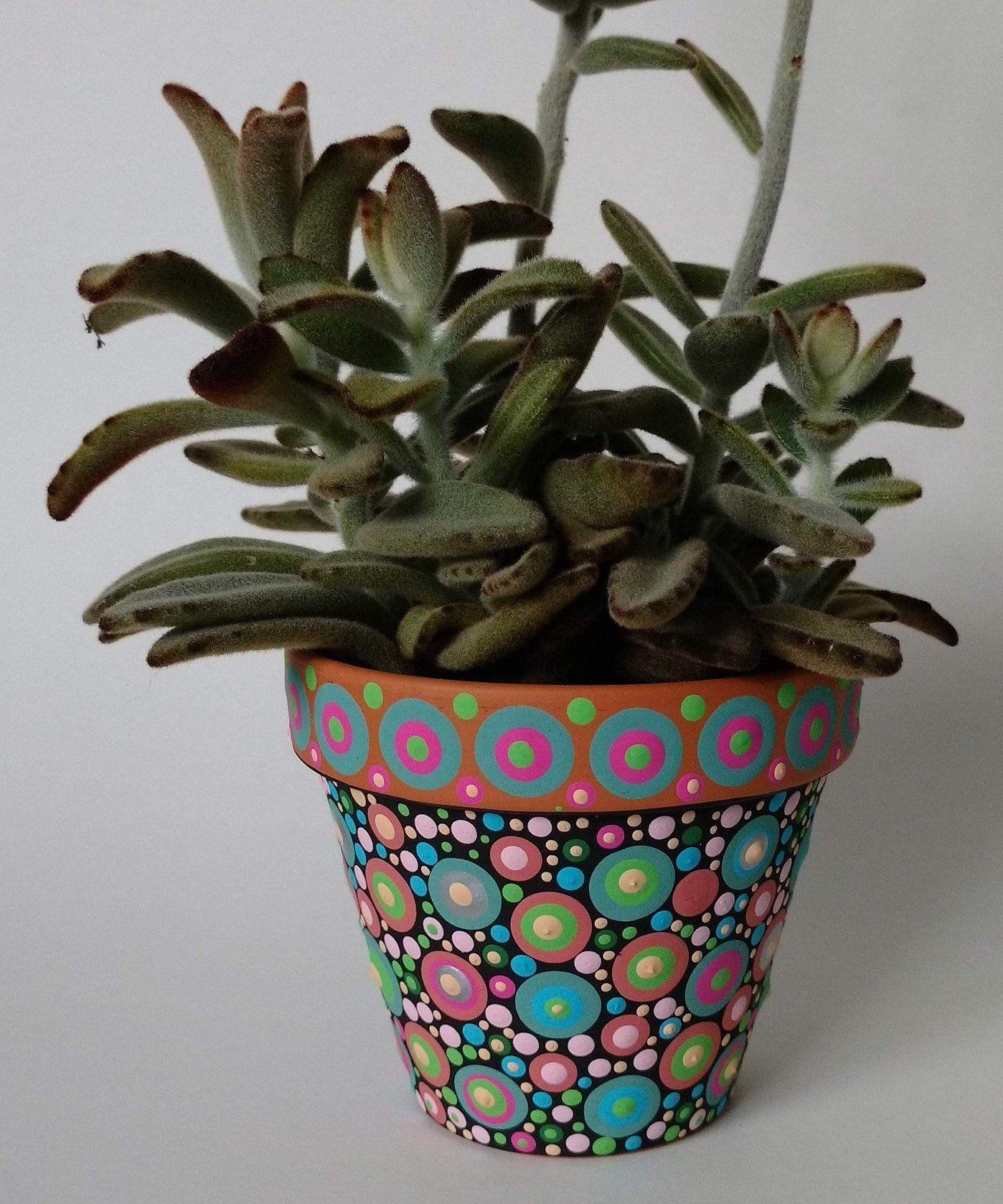 4 Terracotta Pot Succulent Dot