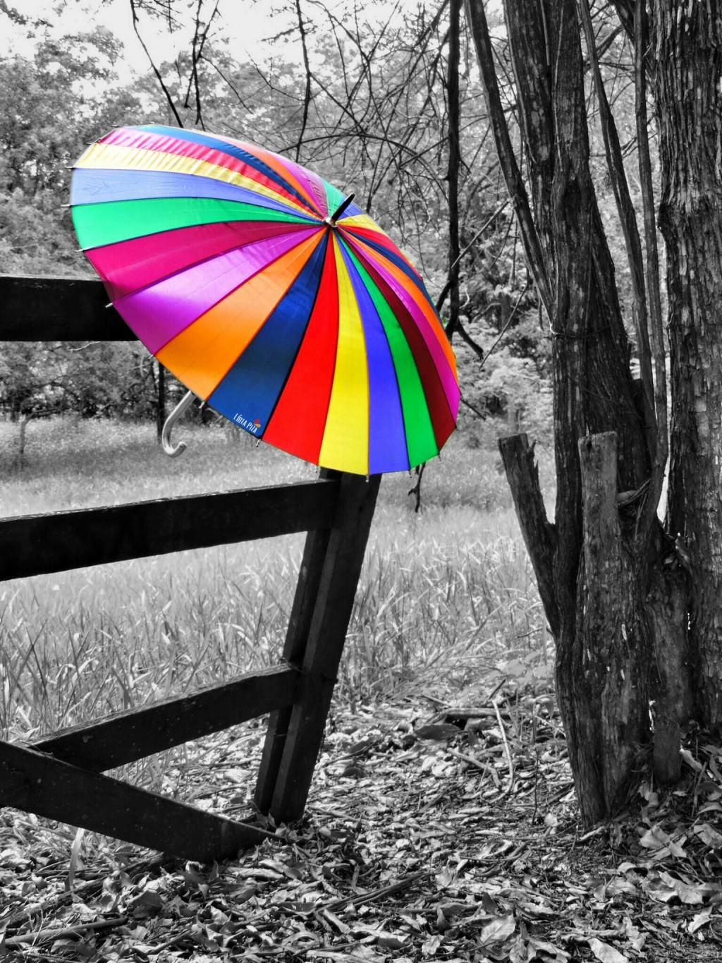 Re post for daily tag FRItag #colorful #umbrella #photography ... for Colorful Umbrella Photography  35fsj