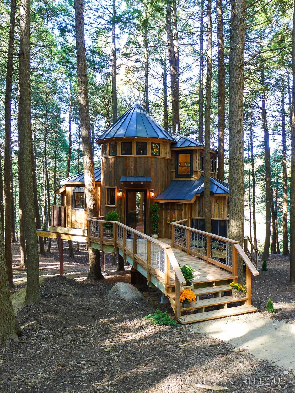 Maine 2017 15 Jpg Luxury Tree Houses House In The Woods