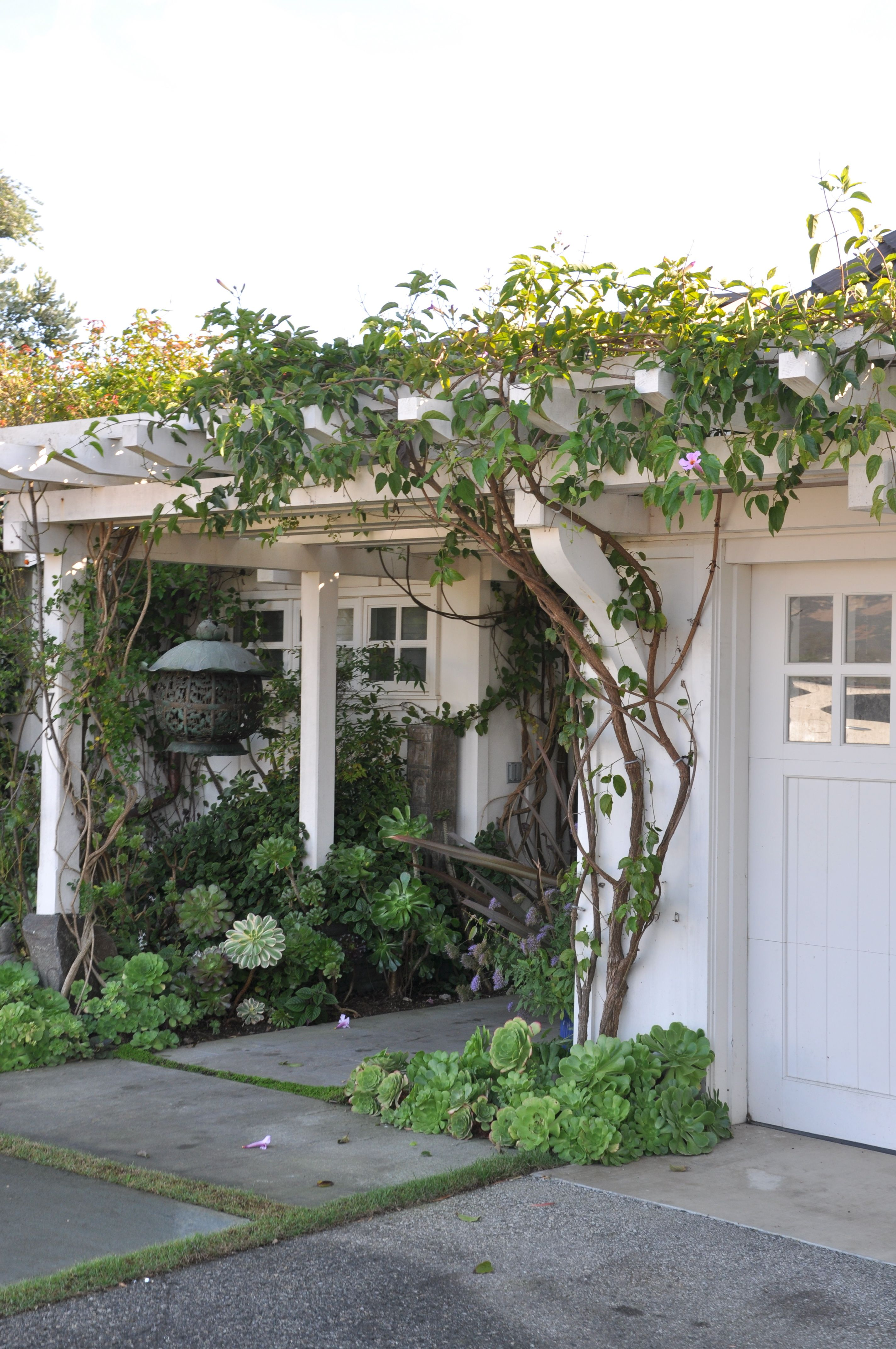 Front Yard Garden With Succulents And Trellis For Climber | | Curb Appeal Entry U0026 Drive ...