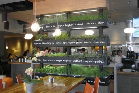 Lyfe Kitchen S Green Restaurant Design Greens Restaurant
