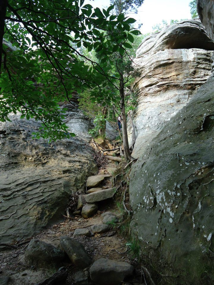 Garden of the Gods - Southern Illinois Giant City | Carbondale IL ...
