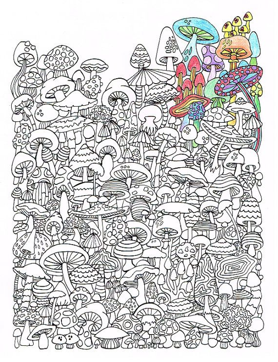 Adult Coloring Page - Mushrooms - Printable coloring page for adults ...
