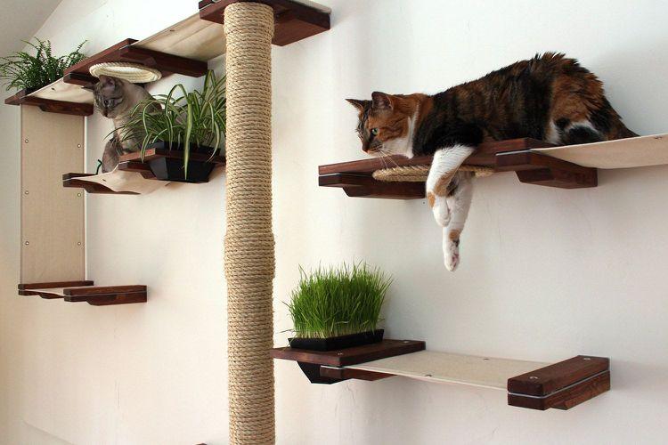 Katzen Kletterlandschaft Kratzbaum Ausruhplatze Cat Design Ideas