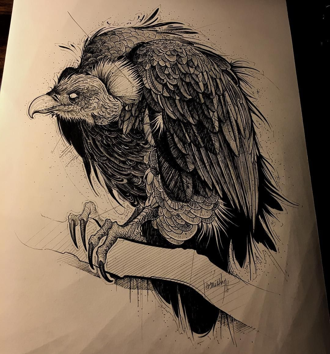 Just for fun vulture tattooflash bigbird birdsketch for Vulture tattoo meaning