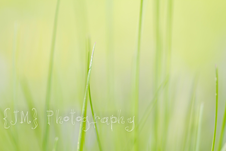 my photo:)