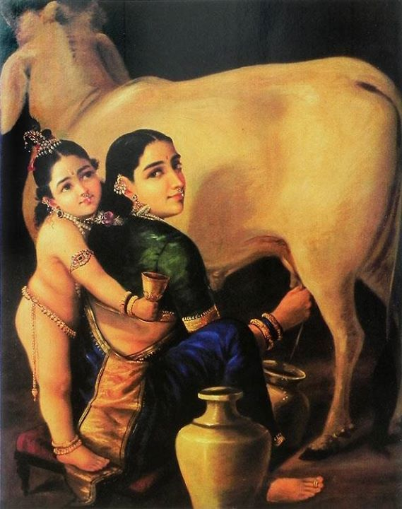 Although I am grateful to vegans for the compassion shown to animals and the efforts trying to save them,  I eat only what Krishna likes.  Thus, milk should come from protected cows that, when they grow old, are not slaughtered but allowed to live out their lifespans happily. Not that we have to give up drinking or eating dairy products.
