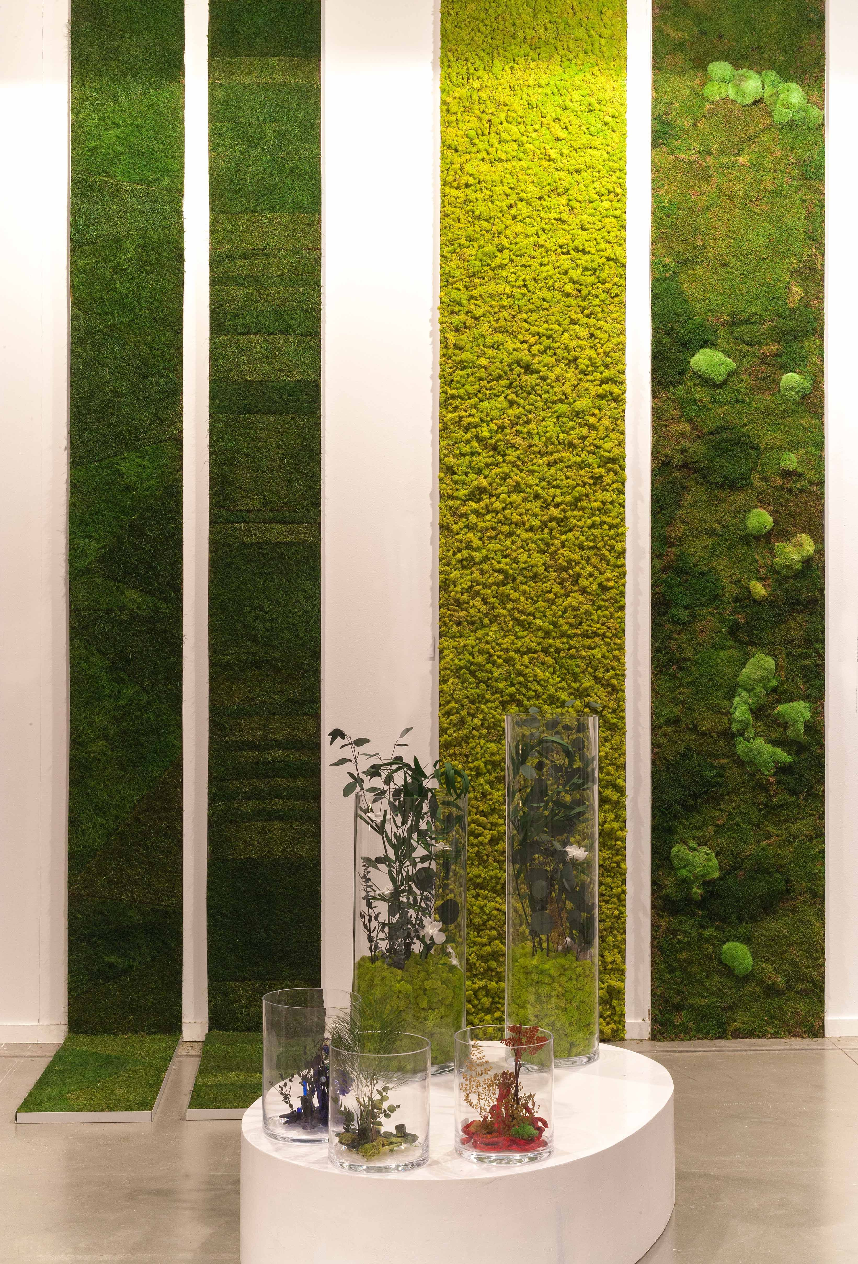 vertical gardens with natural preserved plants and mosses by