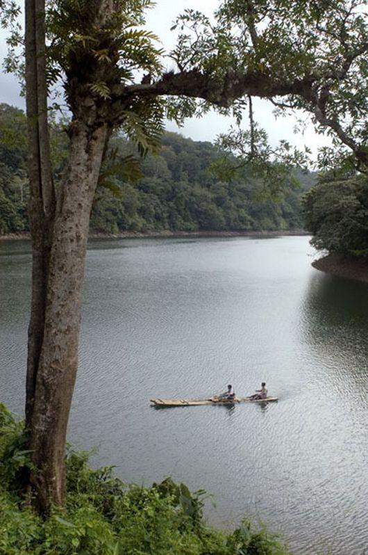 Rainforest Boutique Resort, Athirapally, Chalakudy, Kerala