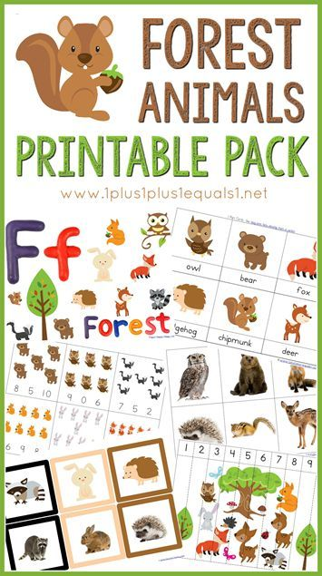 Forest Animals Printable Pack Forest Animals Preschool Preschool Crafts Forest Animals Theme