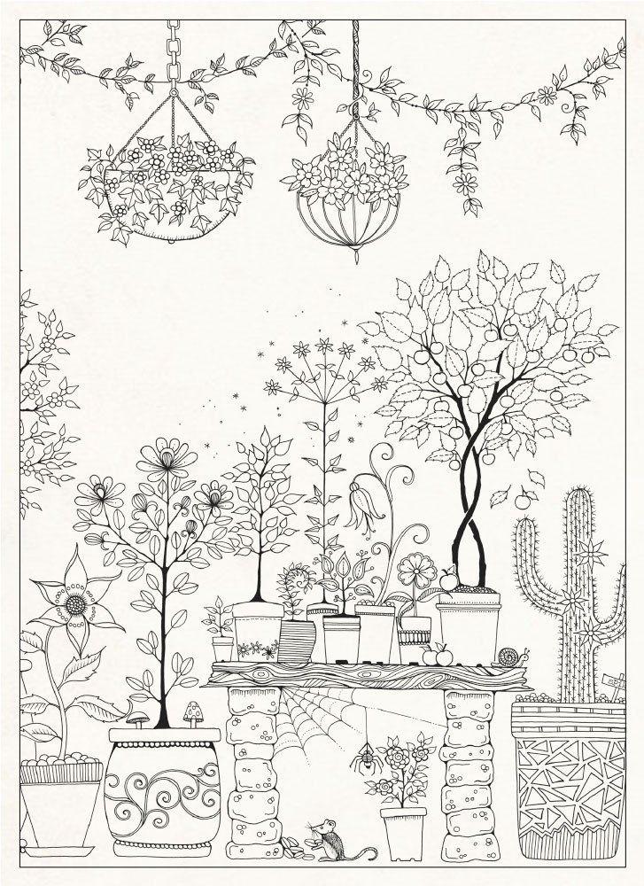 Secret Garden 20 Postcards Coloriage Dessin Coloriage Coloriage Nature
