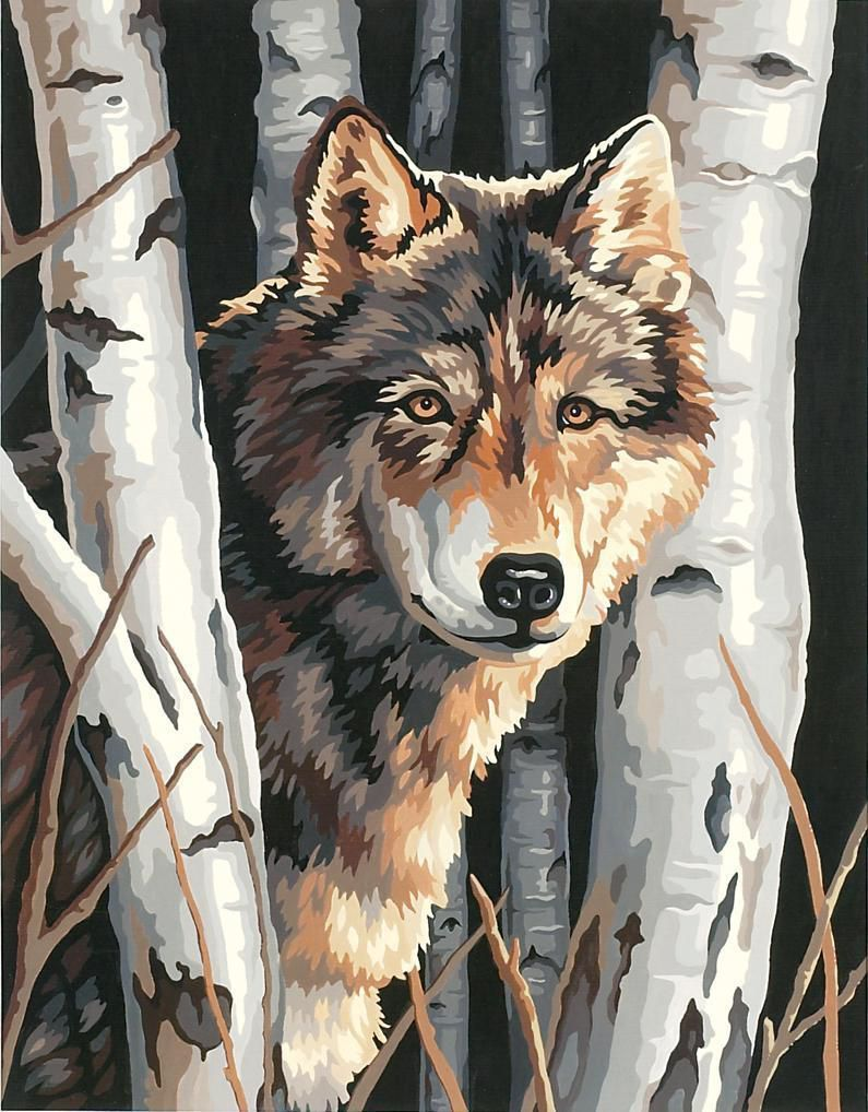 Wolf Bilder Malen Bilder Forest Painting Paint By Number Tree Painting