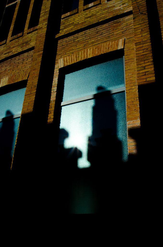 Entre luces y sombras