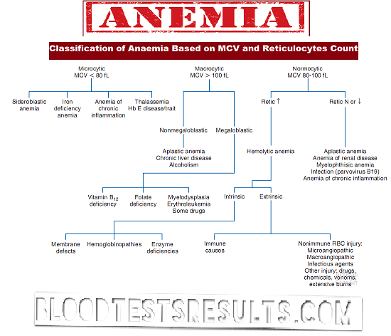 all types of anemia with full anemia np pediatric nursing
