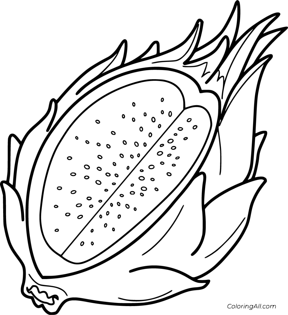 6 Free Printable Pitaya Coloring Pages In Vector Format Easy To Print From Any Device And Automatically F Coloring Pages Fruit Coloring Pages Fruit Printables