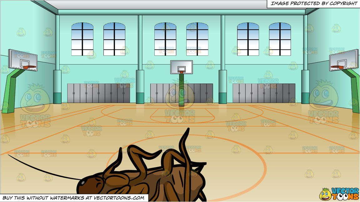 Clipart Cartoon A Dead Cockroach And Indoor Basketball Court Background Vendor Vectortoon Type Clipart Indoor Basketball Court Indoor Basketball Indoor